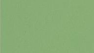 福皇-浅绿色